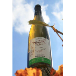Riesling   Alsace BIO 75 cl